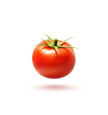 Pan Pomidor